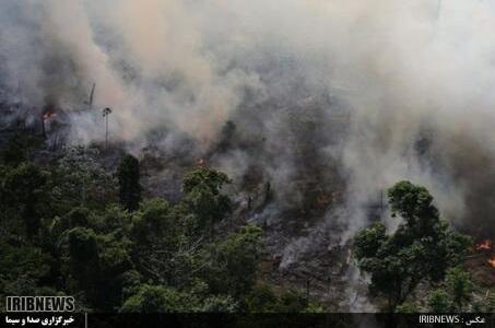 مهار کامل آتش سوزی جنگلهای ارسباران