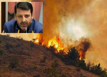 ورود مدعیالعموم به آتش سوزی جنگلهای ارسباران
